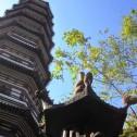 335 : 六榕寺